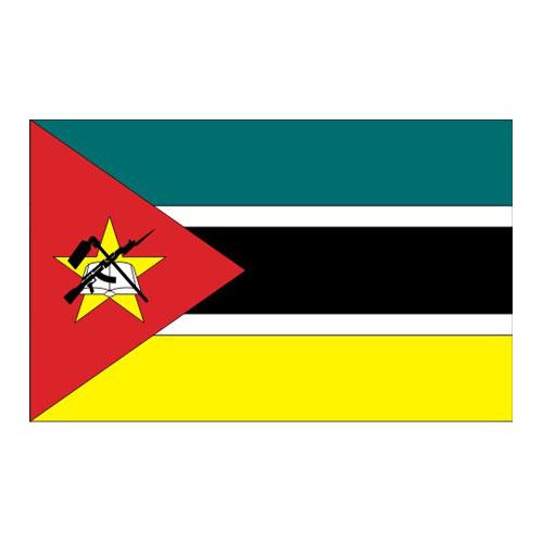 84107_ldbndvnmozambique_1